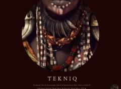 TekniQ - Transitions